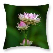 Tiny Dahlias Green Aura Throw Pillow