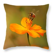 Tiny Dancer Throw Pillow by Marion Cullen