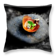 Tiny Dream Throw Pillow