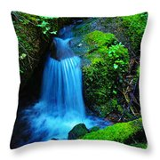 Tiny Falls Throw Pillow