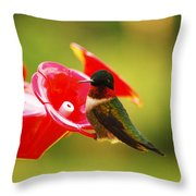 Tiny Feathers Throw Pillow