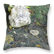 Tiny Fish In The Clear Water Throw Pillow