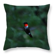 Tiny Flier Throw Pillow
