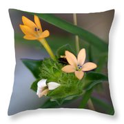Tiny Flowers  Throw Pillow