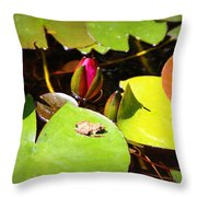 Tiny Frog Throw Pillow