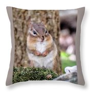 Tiny Hands Throw Pillow