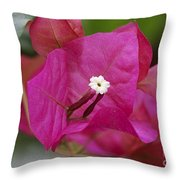 Tiny Little White Flower Throw Pillow