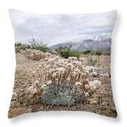 Tiny Mountain Blooms Throw Pillow by Margaret Pitcher