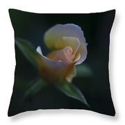 Tiny Pink Rosebud Throw Pillow