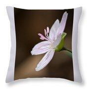 Tiny Spring Beauty Throw Pillow