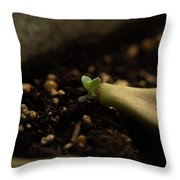 Tiny Succulent Throw Pillow