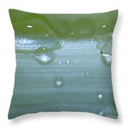 Tiny Water Drops On Stipe Throw Pillow