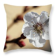 Tiny White Flower Throw Pillow
