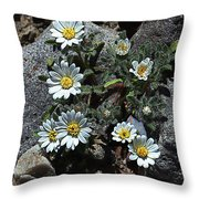 Tiny White Flowers In The Gravel Throw Pillow