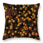 Tiny Yellow Flowrers On The Desert Floor Throw Pillow