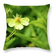 Tiny Yellow  Throw Pillow