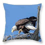 Tip Toeing Across Nest Throw Pillow