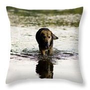 Tired Dog Throw Pillow