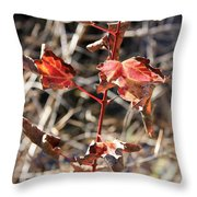 Tired Leaves Throw Pillow