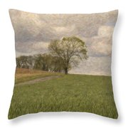 Tired Of Being Alone Throw Pillow