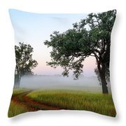 Tireen 2am-001412 Throw Pillow