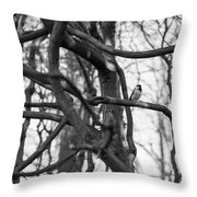 Tit Bird Perching On Tree Throw Pillow