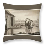 Title A Cow Standing In A Pool Beside  Throw Pillow