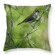 Titmouse In The Brush Throw Pillow