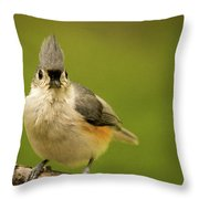 Titmouse Says Here Is Looking At You Throw Pillow