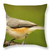 Titmouse With Bad Hairdo 3 Throw Pillow
