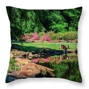 Taking A Break At The Azalea Pond Throw Pillow