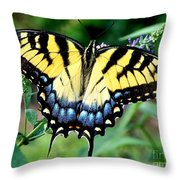To Be Admired Throw Pillow