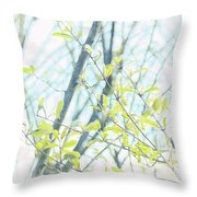 To Be In The Light Throw Pillow