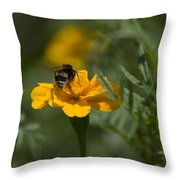 To Be Or Not To Bee Throw Pillow