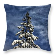 To Blue Horizons Throw Pillow