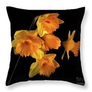 To Hold In Your Heart Throw Pillow
