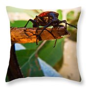To Jump Or Not To Jump Throw Pillow