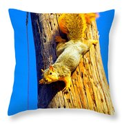 To Squirrels And To Me Throw Pillow by Guy Ricketts