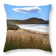 To The Beach Throw Pillow