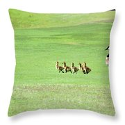 To The Pond Throw Pillow by Suzanne Gaff