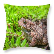 Toad In The Grass Throw Pillow