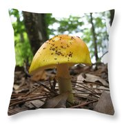 Toad Stool Throw Pillow
