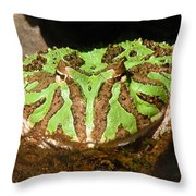 Toad With Green Stripes Throw Pillow