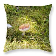 Toadstool Grows On A Forest Floor. Throw Pillow