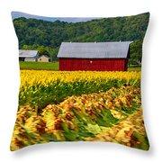 Tobacco Barn 2 Throw Pillow