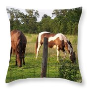 Tobiano And Bay Horses Throw Pillow