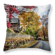 Toccoa River Road Throw Pillow