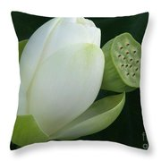 Today And Yesterday Throw Pillow