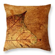 Today Everything Changes Throw Pillow