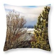 Today The Weather Report Throw Pillow